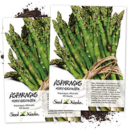 Seed Needs, Mary Washington Asparagus (Asparagus officinalis) Twin Pack of 85 Seeds Each Non-GMO