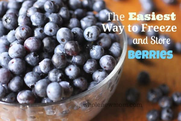 How to Freeze Blueberries - The Easiest Way