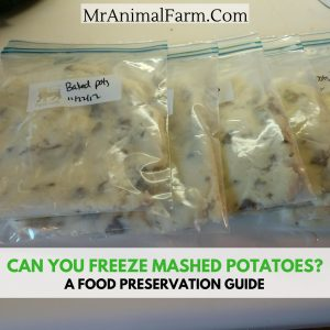 Can You Freeze Mashed Potatoes? A Food Preservation Guide