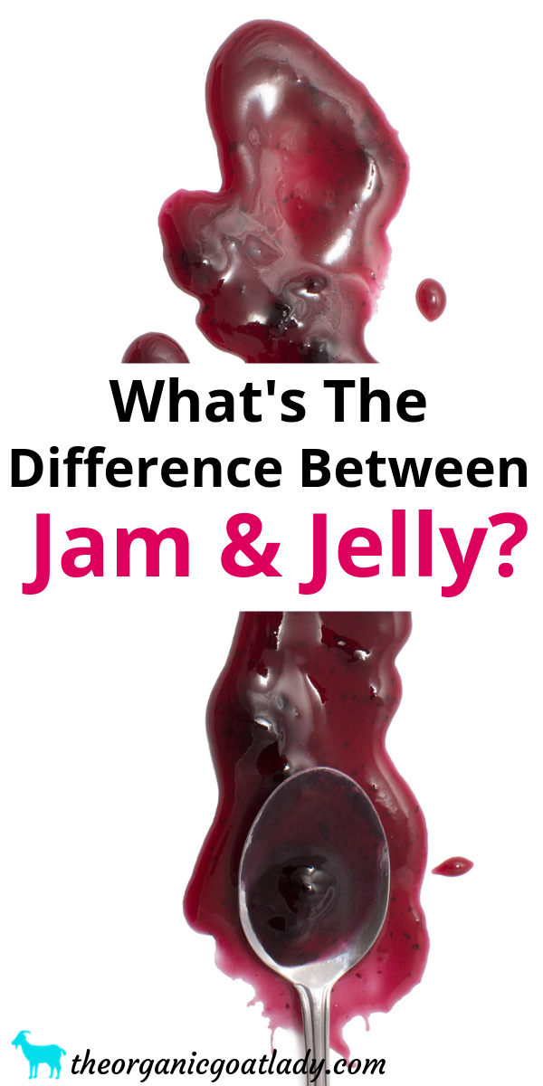 What's the Difference Between Jam and Jelly