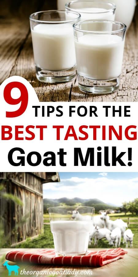 Best Tasting Goat Milk