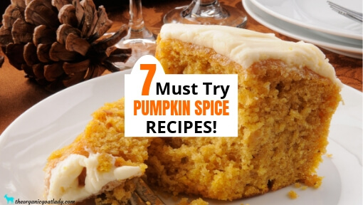 7 Must Try Pumpkin Spice Recipes!