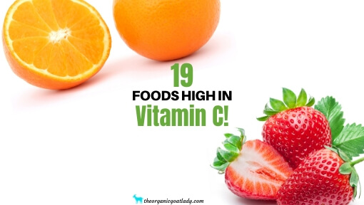 19 Foods High in Vitamin C