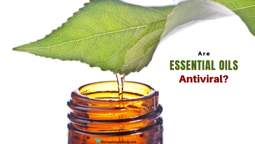Are There Really Antiviral Essential Oils?