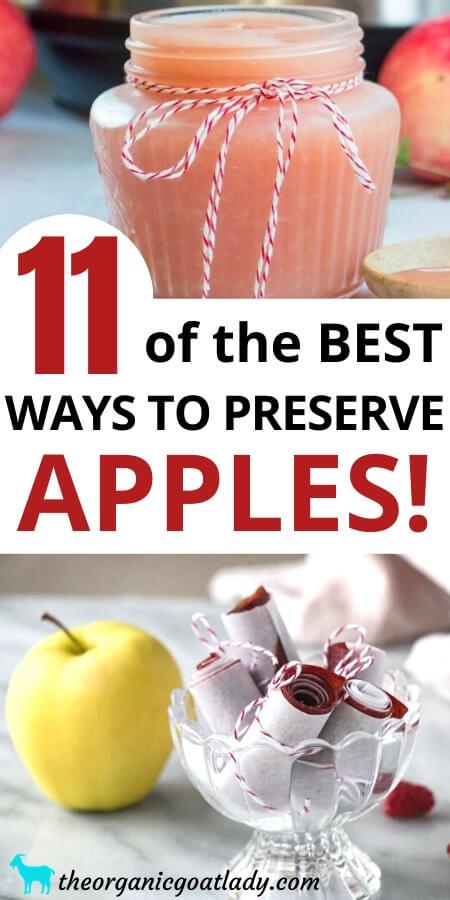 Ways to Preserve Apples