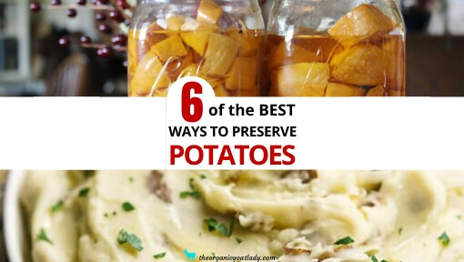 6 Ways to Preserve Potatoes