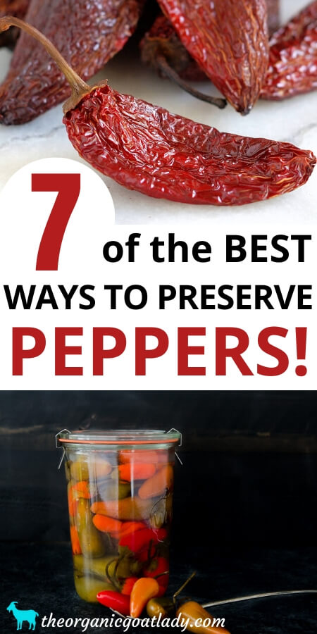 Ways to Preserve Peppers
