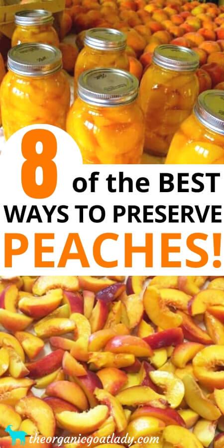 Ways to Preserve Peaches