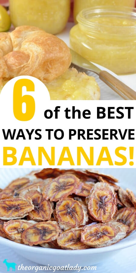 Ways to Preserve Bananas