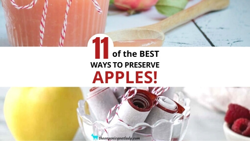 Ways to Preserve Apples