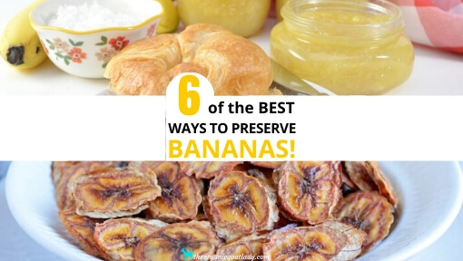 6 Ways to Preserve Bananas