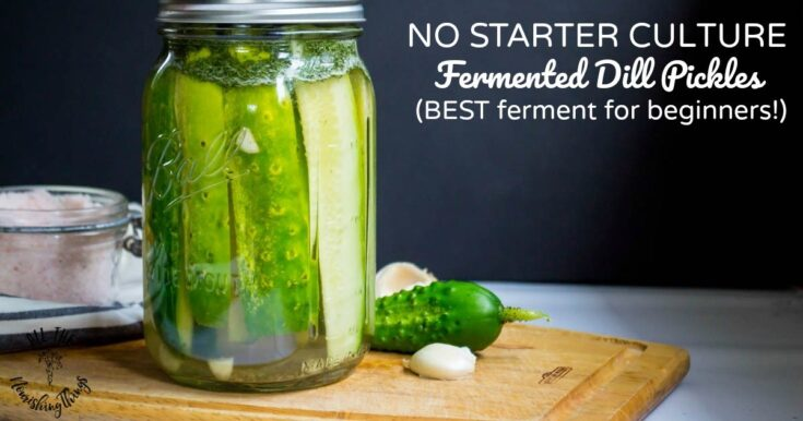 No Starter Culture Fermented Dill Pickles (4 ingredients, probiotic, raw!)