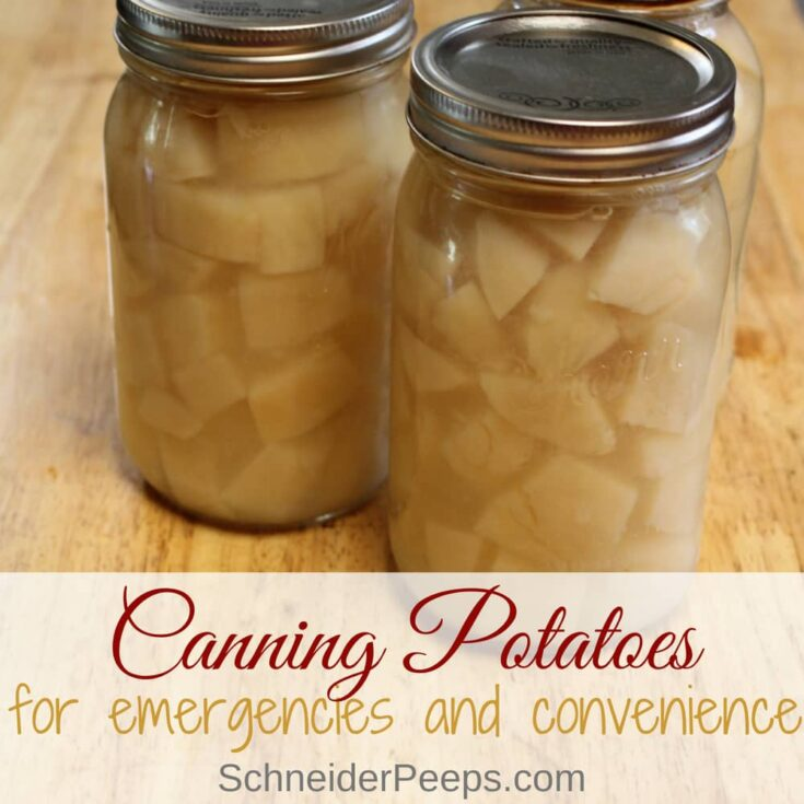 Canning Potatoes for Emergencies and Convenience {plus how to use canned potatoes}