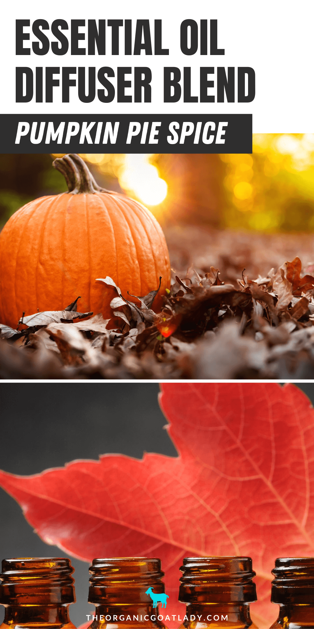 Pumpkin Pie Diffuser Blend