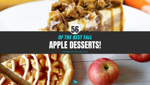 Apple Desserts for Fall!