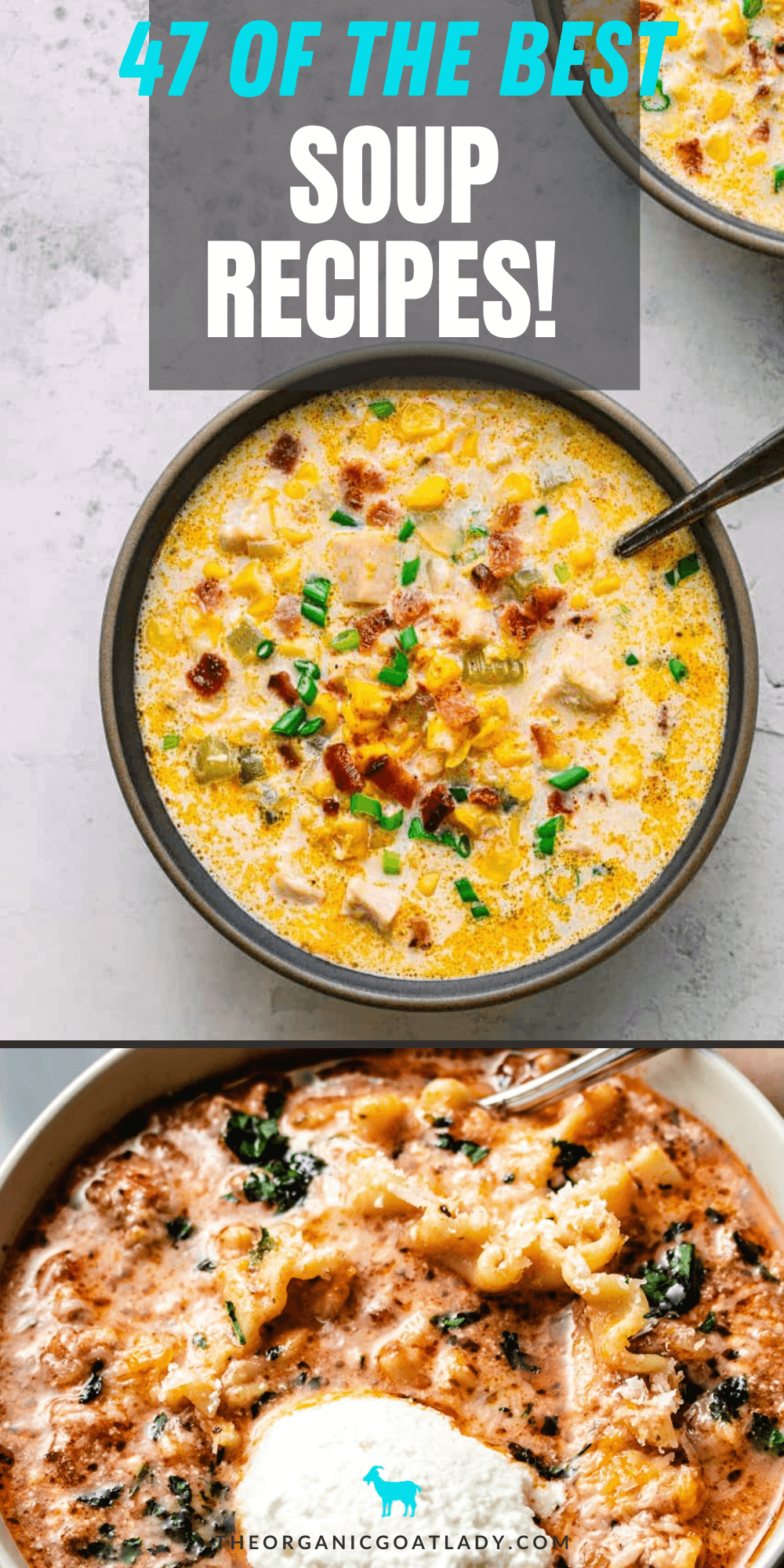 Fall and Winter Soup Recipes