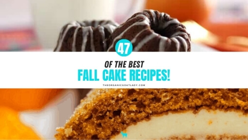 Best Fall Cake Recipes!