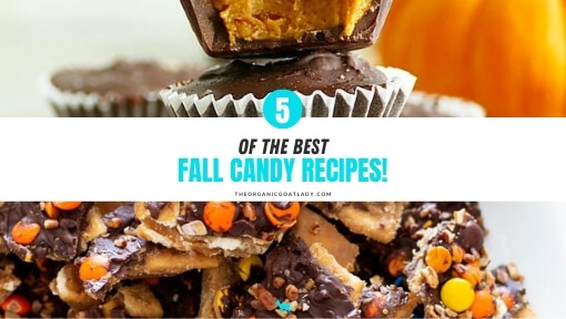 Best Fall Candy Recipes!